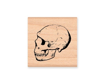 HUMAN SKULL Rubber Stamp Halloween Party Stamp Skeleton Head Science Student Thinker College Stamp Mountainside Crafts (20-31)