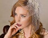 Birdcage Wedding Veil with Flower and Pearl Spray Wedding Headpiece
