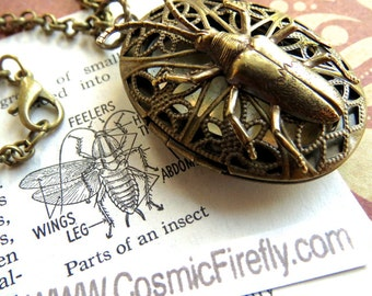 Bug Locket Necklace Steampunk Necklace Insect Necklace Antiqued Brass Oval Locket Bug Jewelry From Cosmic Firefly