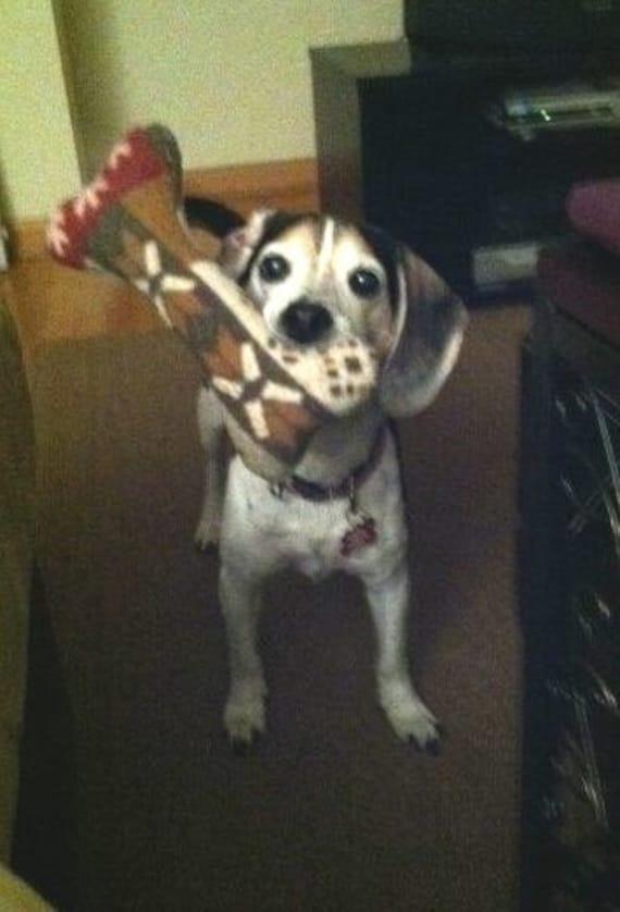 JUMBO - SINGLE SQUEAKER - Dog Bone Toy - many colors