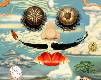 "Dali and the Sea Urchins - Print 8""x11"" - Surreal Portrait Face, Octopus Hair, Seafood Eyes and Red Lips on Blue Sky with Clouds, Eggs & Ant"