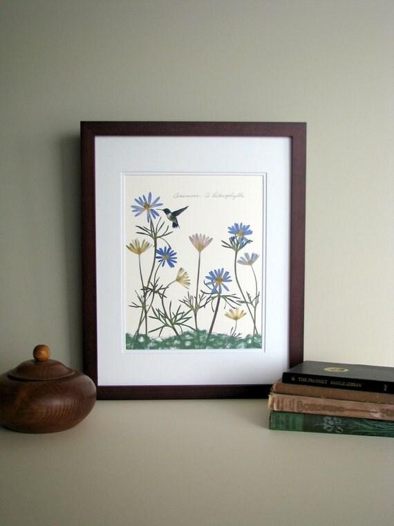 Pressed flower print, 11x14 double matted, Anemone flowers with hummingbird, bright flowers, wall decor no. 0011