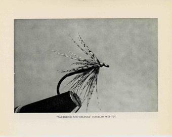 1970 FLY FISHING - hackled wet fly fishing lures plugs flies original vintage fish print - partridge and orange hackled wet fly