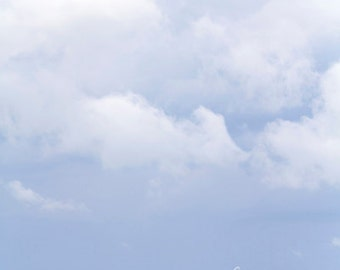 golden prairies, fine art print, prairie photography, canola field, pastel blue sky, canadiana, rural alberta