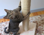 "Vertical Cat Scratching Post As Seen On ""My Cat From Hell"""