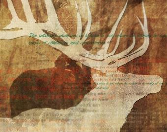 Norwegian Wood 02: Giclee Fine Art Print 13X19