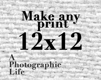 Choose a ((12x12)) size for any photo in my shop