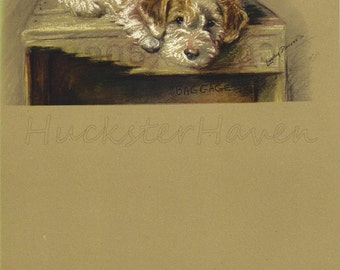 TERRIER - 1940s  Lucy Dawson, Dog Print, Wall Decor,  Animal Print, Art Print, Illustration to Frame, plate, brown white, B-4