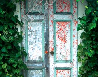 """RUSTIC DOOR -- 8"""" x 10"""" digital print"""