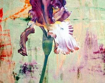 "Archival Print of original Mixed Media ""Purple Iris on Turquoise (Vertical)"""