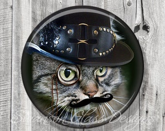 Steampunk Cat Pocket Mirror, Photo Mirror, Compact Mirror Illustration Image A38