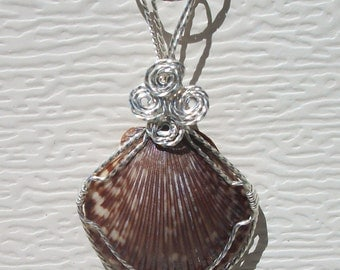 Natural Sea Shell Pendant, wire wrapped in silver filled wire.