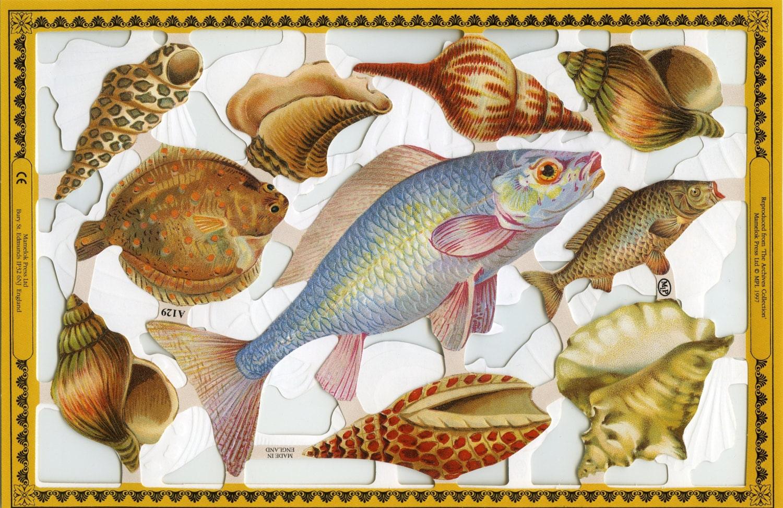 Shells Scrap Reliefs Shell Die Cuts Fish Die Cuts Fish