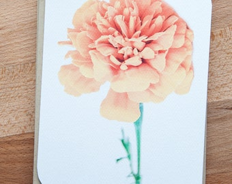 Marigold Set of Cards. Blank Cards with Envelopes. Sustainable. Note Card Set