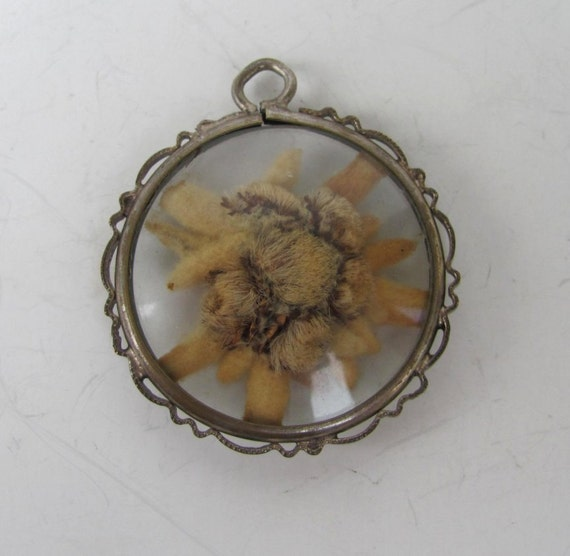 Sale Reduced Sale Antique Victorian Edelweiss Flower Pendant