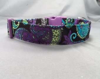 Blue and Purple Paisley Dog Collar on Black