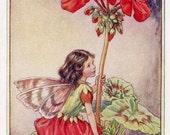 Geranium Flower Fairy Vintage Print, c.1950 Cicely Mary Barker Book Plate Illustration