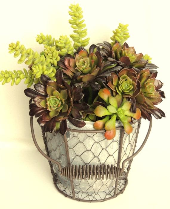 Chicken Wire Basket with Flower Pot   Aged Clay Planter   Rustic Decor   Flower Pot   Terra Cotta Pot   Planter   Chicken wire home decor