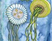 Jellyfish Three print - 8x10