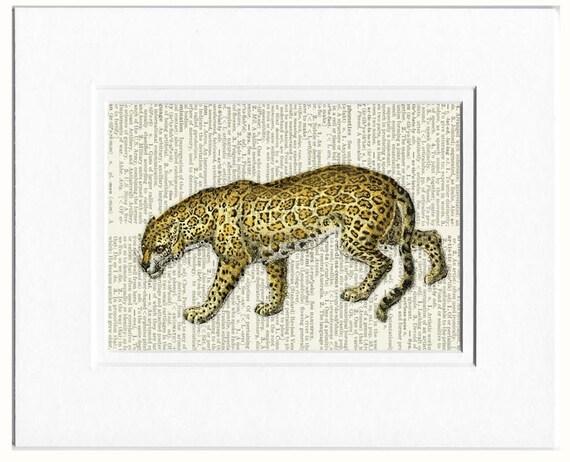 jaguar dictionary page print