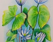 Watercolor painting of Twinleaf wild flowers, flower artwork, home decor