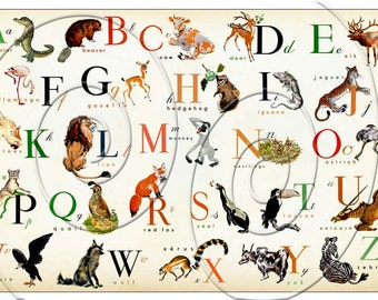 Horizontal - English Animal Alphabet  - Wonderful Animal  Alphabet Print on 17 x 11