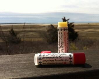 Organic Lip Balm; Skinny Dip. Vegan lip balm, organic lip treatment, organic beauty, organic skin care