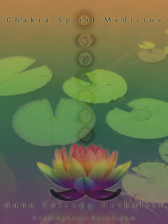 Chakra Spirit Medicine eBook