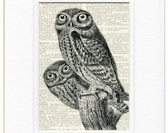 baby owls dictionary page print