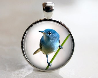 Tiny Blue Bird Pendant, Necklace or Key Chain - Choice of Bezel Color - One Inch Round