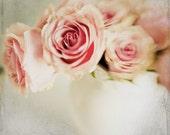 Pink Rose Photo,  White Vase 8x8 Print