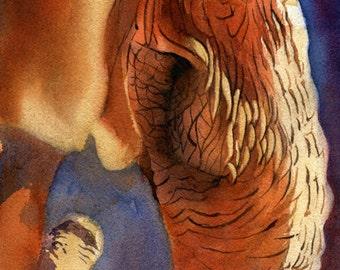Elephant Art Safari Africa Wildlife Nature Art Print