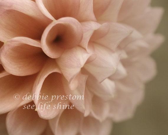 Pink Wall Art, Dahlia Art, Pink flower photography, Bedroom Decor, Flower photo, nature photography - In the Pink, 8x10