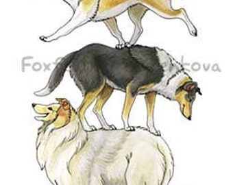 Collie Dog Stack Painting Print - Wall art, animal stack, totem, stacked, rough, smooth, blue merle, tri-color, sable, white, lassie