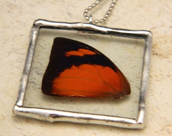 ON SALE-Real Butterfly Wing Soldered Necklace/Pendant-Autumn