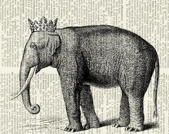 Elephant princess print