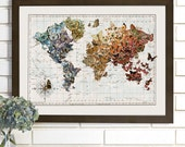 Butterfly Migration Vintage Wall Map Art