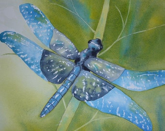 Art, Fine Art Print of Dragonfly- Reproduction of Watercolor Painting
