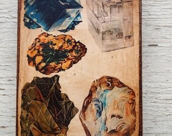 Vintage Rock & Minerals Specimens - Collection F 4x6