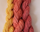 3 Co-ordinating Skeins Superwash Wool Handspun Yarn