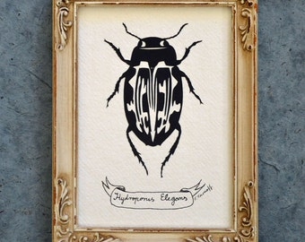Sale 20% Off // WATER BEETLE Papercut - Hand-Cut Silhouette, Framed // Coupon Code SALE20