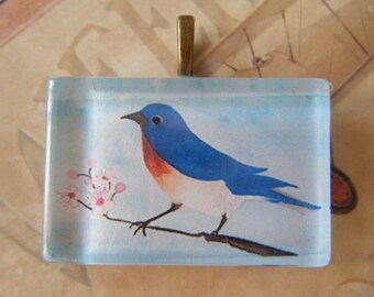 NEW  Sweet BlueBird on Cherry Tree Branch Original Watercolor Art Glass Tile Necklace
