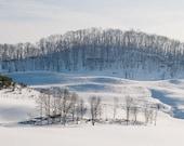 Winter Decor, nature photography, winter wall art, white snow, mountains, trees, fine art print 8x10 - Winter Whites