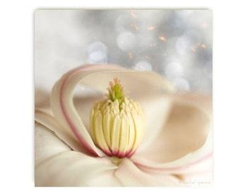Magnolia Flower Photograph Flower Print...Affordable Home Photography Prints Nature Lover Woodland Scene Flower Botany Print