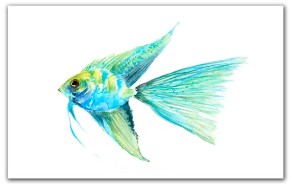 Items similar to Angel fish 8x10 giclee print. Watercolor ...