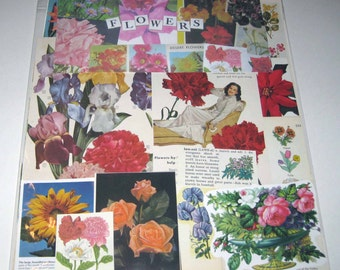 Flower Ephemera Pack of 65 Pieces of Vintage Ephemera for Altered Art