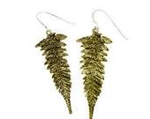 Leaf Earrings Gold Bronze Fern