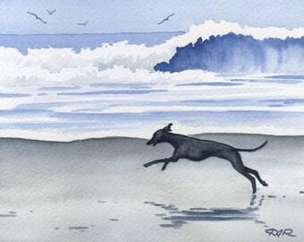 "Italian Greyhound Art Print ""ITALIAN GREYHOUND At The Beach Signed by Artist DJ Rogers"
