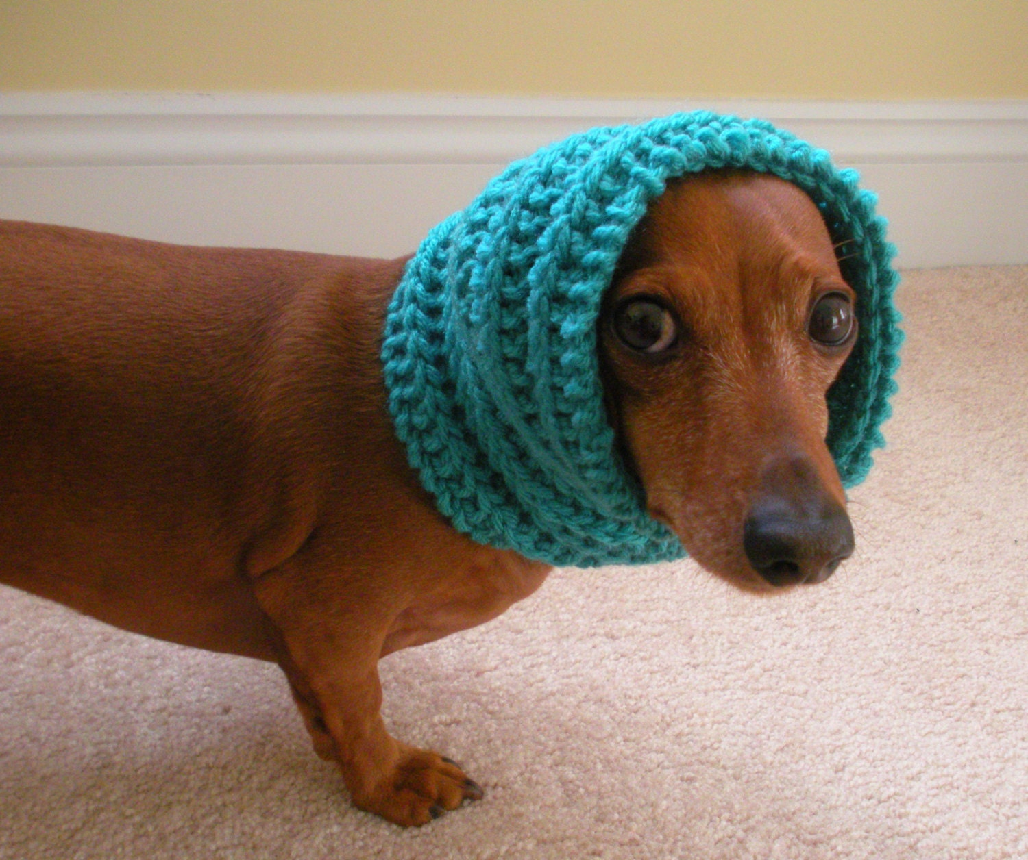 Knitting Pattern For Small Neck Scarf : Dog Neck Warmer Knit Cowl PDF PATTERN Small Medium and