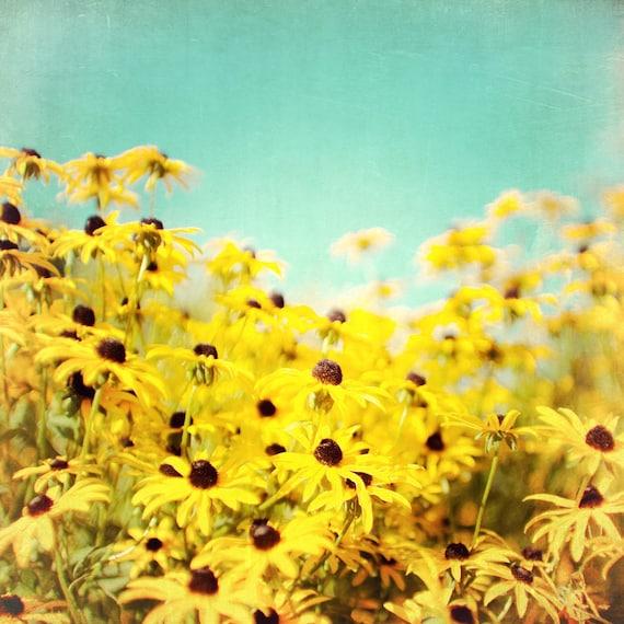 Spring photography, Bathroom Art, yellow flowers, bright sunshine, wall decor, girl's room decor, lemon, powder blue, yellow bath decor